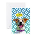 Comical Jack Greeting Cards (Pk of 10)