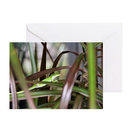 Green Gecko Greeting Cards (Pk of 10)