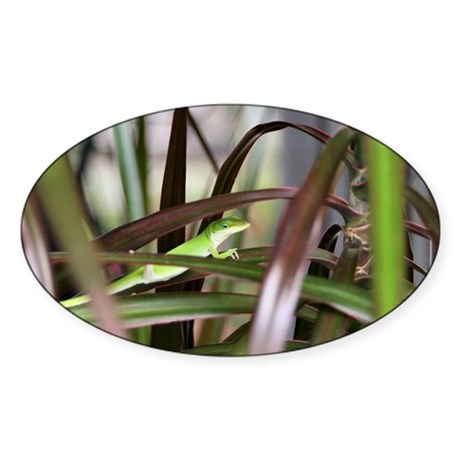 Green Gecko Oval Sticker