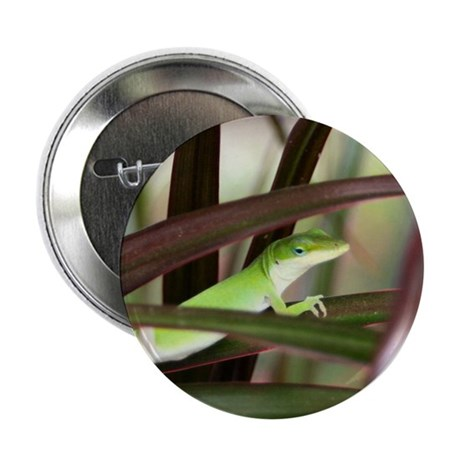 Green Gecko Button