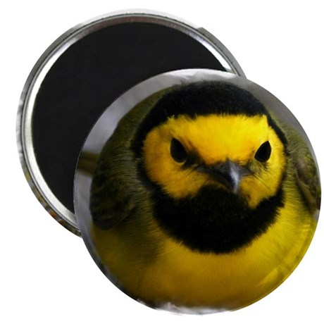 Yellow Bird Magnet