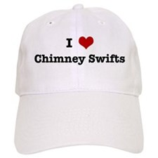 I love Chimney Swifts Baseball Cap