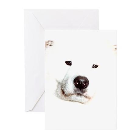 Samoyed Face Greeting Cards (Pk of 20)