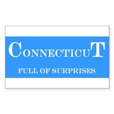 Connecticut State Rectangle Decal