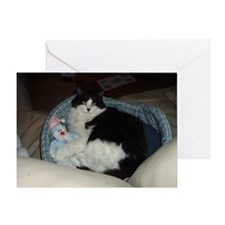 Black and White Longhaired Cat Greeting Card