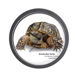 Ornate Box Turtle Wall Clock