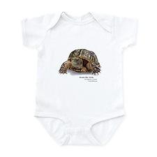 Ornate Box Turtle Onesie