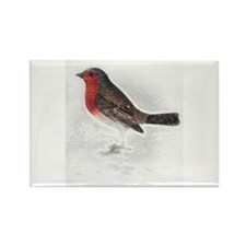 It's a Robin! Rectangle Magnet