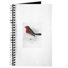It's a Robin! Journal