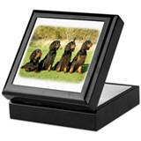 Gordon Setter 9Y105D-080 Keepsake Box