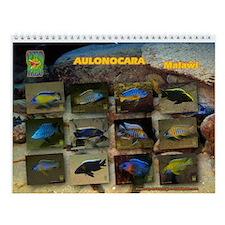 Aulonocara Calendar 2014