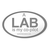 LAB co-pilot sticker Oval D&#233;calcomanies