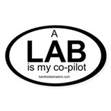 LAB co-pilot sticker Oval Décalcomanies
