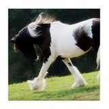 Gypsy Vanner Tile Coaster