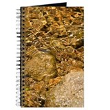 Texas Stream Journal