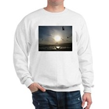Unique Seagull Sweatshirt