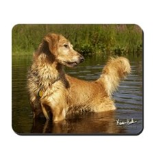 Golden in the Pond Mousepad
