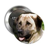 "Anatolian shepherd Portrait 2.25"" Button (10 pack)"