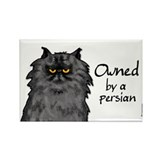 owned by a persian Rectangle Magnet