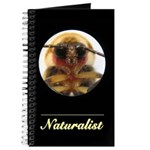 Firefly Head Naturalist Journal
