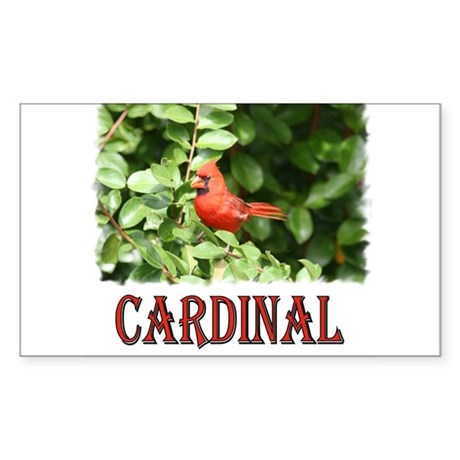 Northern Cardinal Rectangle Sticker