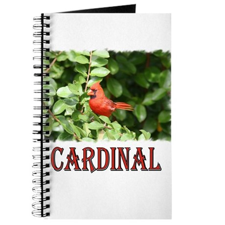 Northern Cardinal Journal