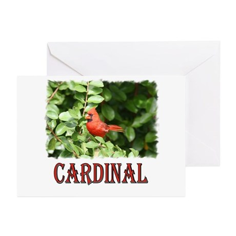 Northern Cardinal Greeting Cards (Pk of 10)