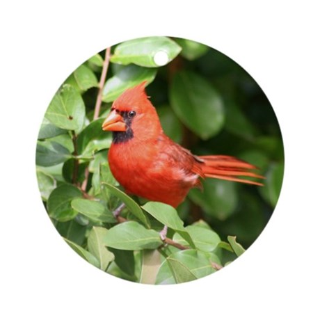 Cardinal Red Bird Keepsake / Ornament (Round)