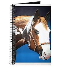 Native Paint Horse Journal