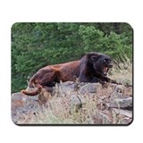 Black Leopard Mousepad