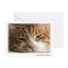 Get Well Cat Greeting Card