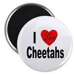 I Love Cheetahs for Cheetah Lovers Magnet
