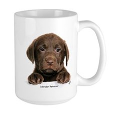 Chocolate Labrador Retriever puppy 9Y270D-050 Larg