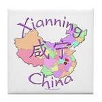 Xianning China Tile Coaster