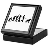 St Bernard Evolution Keepsake Box