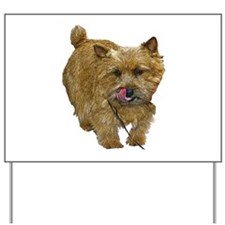 Norwich Terrier Yard Sign