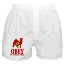 Norwegian Buhund Boxer Shorts