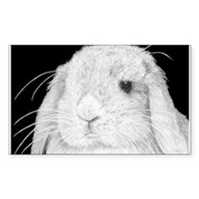 Lop Rabbit Rectangle Decal