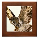 Talon Framed Tile