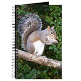 Squirrel on Limb Journal
