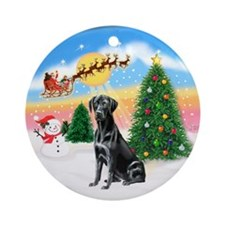 TakeOff1W/ Lab blk Ornament (Round)