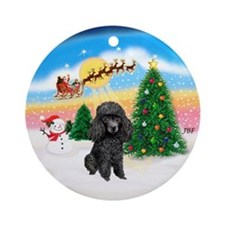 TakeOff1W/ Black Poodle Ornament (Round)