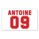 ANTOINE 09 Rectangle Sticker 10 pk)