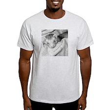 Ferret Saying 132 Ash Grey T-Shirt