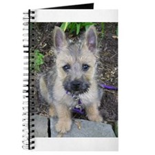 Emma, Cairn Terrier Journal