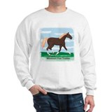 Missouri Fox Trot Horse Jumper