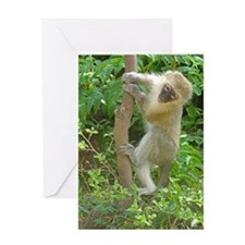 Vervet Climbing Greeting Card