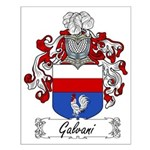 Galvani Family Crest Small Poster