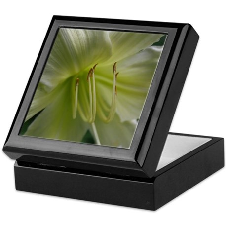 Vanilla Lime Lily Keepsake Box