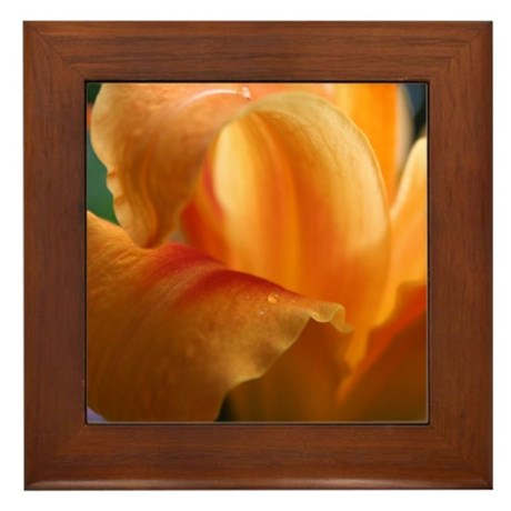 Lily Light Framed Tile